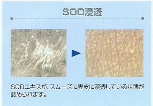 Sod_2